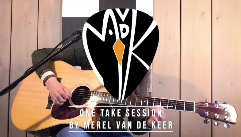 Memphis Minnie - Bumble Bee (Improvisational Cover by Merel van de Keer)